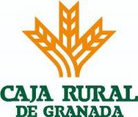 Competiciones para empresas de f tbol 7 f tbol sala y for Caja rural granada oficinas