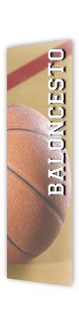 Histórico Competiciones Baloncesto Playa
